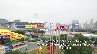 Explore the colorful China-ASEAN Expo