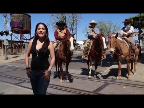 Fort Worth, Texas atrae por sus distritos históricos, acarreo de ganado, vaqueros y compras