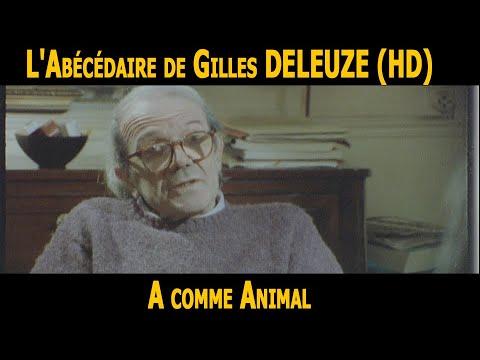 L Abecedaire De Gilles Deleuze A Comme Animal Hd Youtube