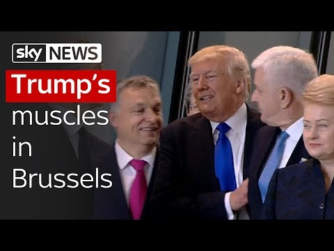 Muscles in Brussels: Donald Trump pushes aside Montenegrin PM