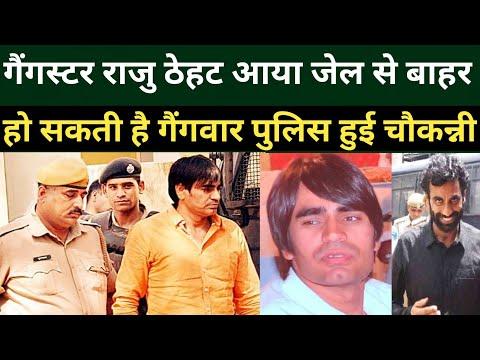 Gangster राजु ठेहट को जेल से मिली पैरोल हो सकती है बड़ी गैंगवार RajasthanPolice को किया गया रेडअर्लट