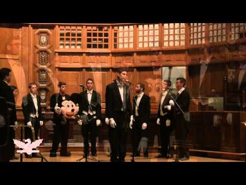 Skinny Love - The Yale Whiffenpoofs of 2014
