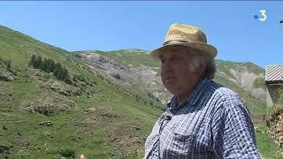 En Isère, les éleveurs découragés face aux attaques de loup