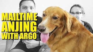 MAILTIME ANJING! | Mail Time