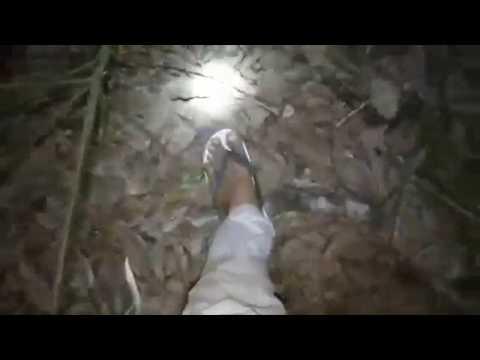 Uji Nyali Mencari Setan Di Hutan Rimba