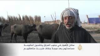 كارثة إنسانية وبيئية في أهوار العراق