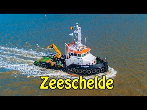 Multipurpose Vessel - Zeeschelde