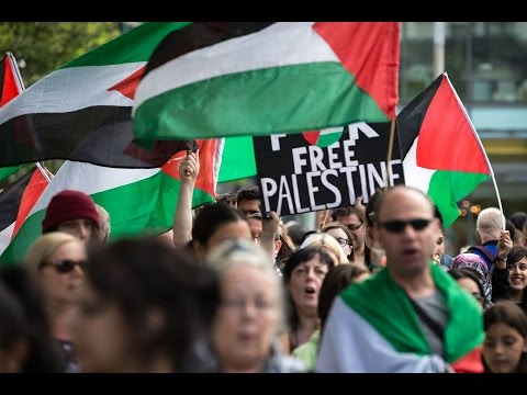 The Silent War On Pro-Palestine Activism & Free Expression