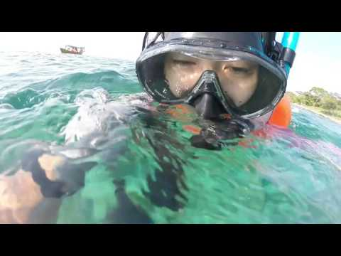 spearfishing koh tang