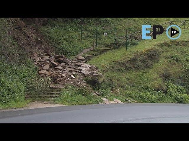 Un árbol desplomado junto a la N-VI inquieta a los conductores