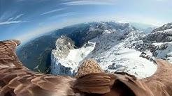 Einzigartige Bilder: Adler fliegt mit Kamera über die Alpen