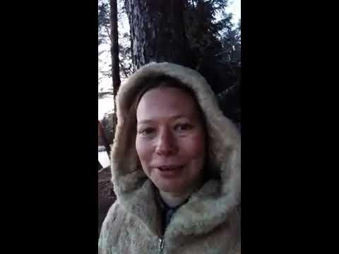 """Сочетание букв"" (Елена Липина) и ""Дерево"" (Марта-Иванна Жарова)"