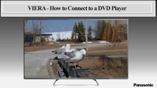 Panasonic VIERA - How to Connect to a DVD Player