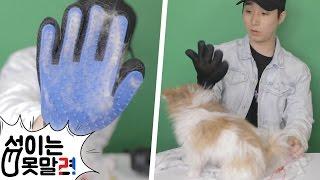 주문폭주로 3주만에 받은 개냥이장갑! 애완동물 쉽게 털관리해주는 장갑 리뷰! [섭이는못말려]