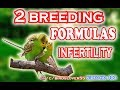 INFERTILITY & Birds, breeding formula. birds k liyah bahtareen setup or breeding formula. Video 99