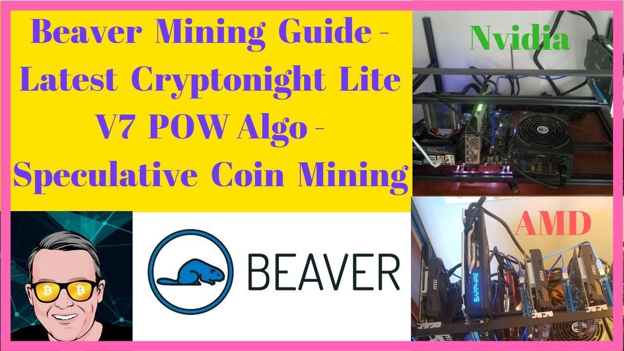 Beaver Mining Information – Newest Cryptonight Lite V7 POW Algo