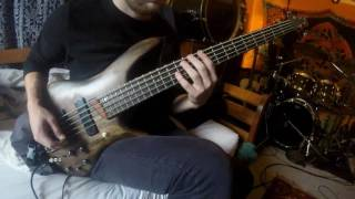 The Dillinger Escape Plan- Understanding Decay (bass cover)