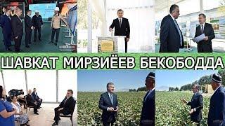 ШАВКАТ МИРЗИЁЕВ БЕКОБОДДА: