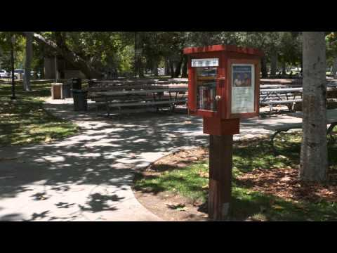 Little Free Libraries - Glendale Library, Arts & Culture