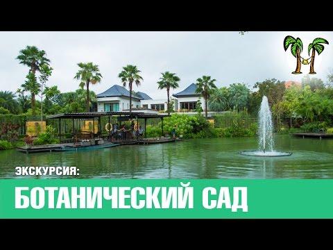 Никитский ботанический сад, карта Фото Как доехать до