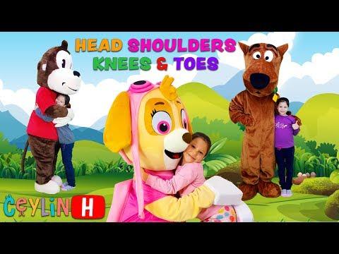 Ceylin & Skye & Scooby-Doo & Koko - Head Shoulders Knees and Toes Songs and Ryhmes for Kids Babies