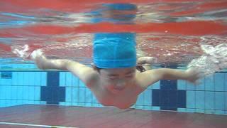 せんのすけプールで泳いでます。 まあ泳いでいると言ってもムチャクチャ...