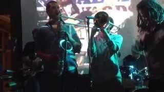 Friday night reggae in Chicago. Ted Sirota