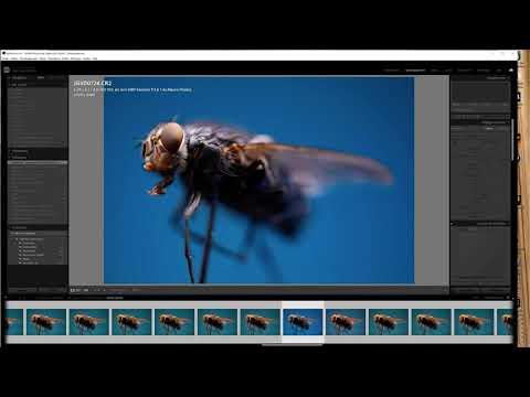 bug dans Adobe Lightroom Classic version 10.0