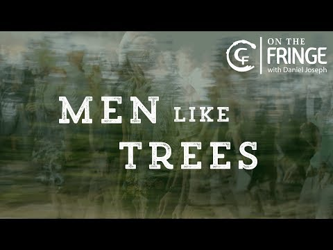 On The Fringe: Men Like Trees