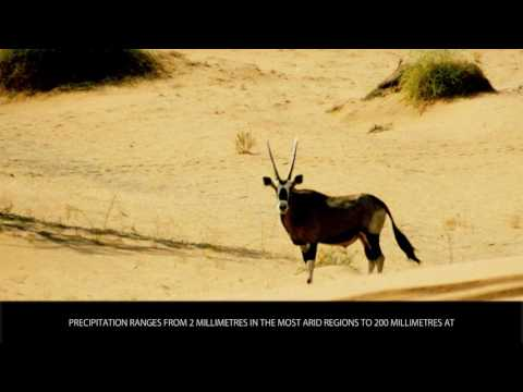 Namib Desert - Tourist Attractions - Wiki Videos by Kinedio