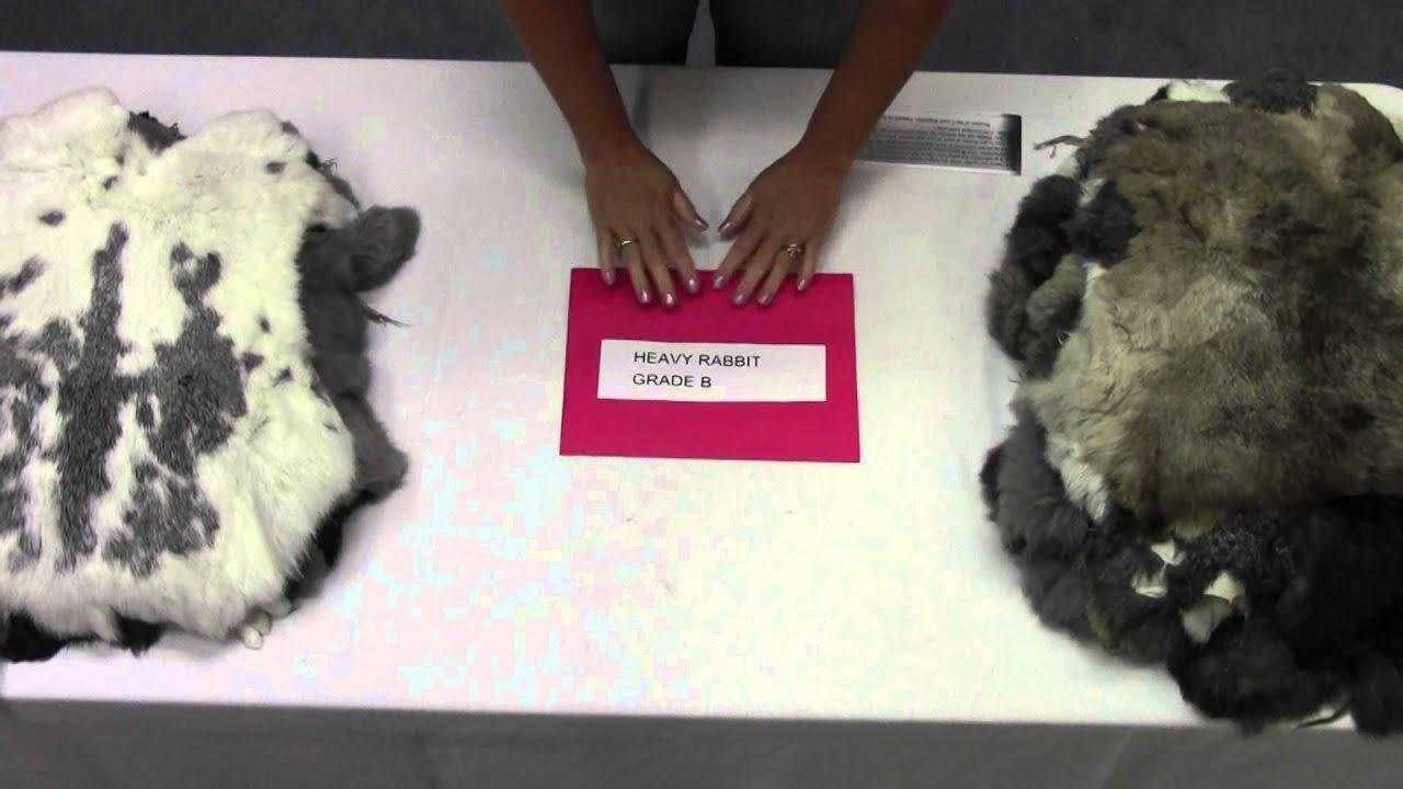 Rabbit Skins Rabbit Hides Rabbit Pelts Rabbit Furs and Black