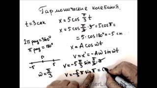 Физика. Механика.Гармонические колебания.
