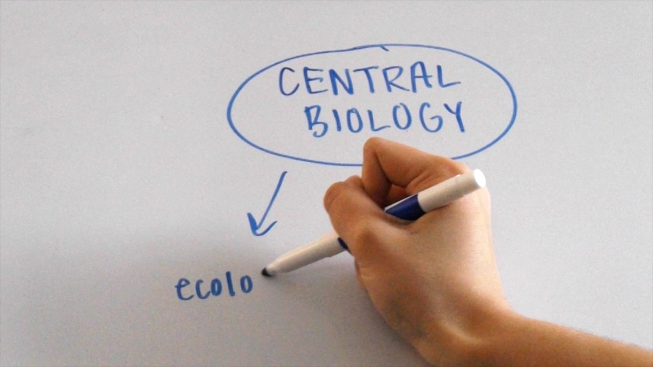 How to Ace the SAT Biology E/M Subject Test!
