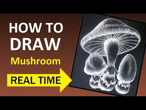 How to Draw Mushroom: Simple, east, basic art tutorial for beginners (real time version) thumbnail