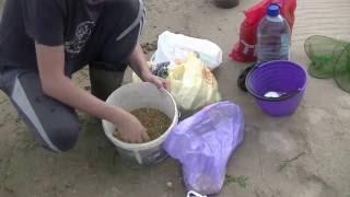 Рыбалка 20-21 августа 2016 река Вычегда Лещ и Подлещ на фидер