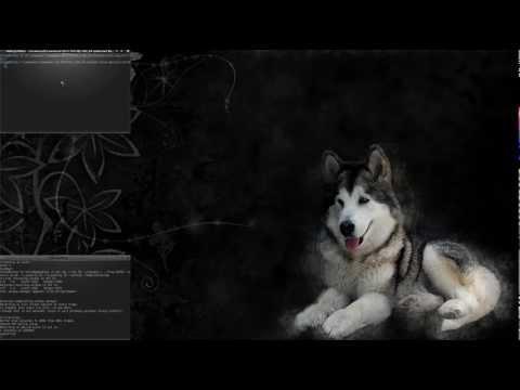 Probando Firefox/Iceweasel compilado con soporte gstreamer