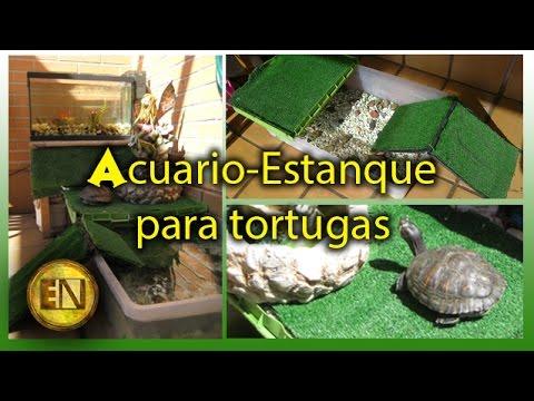Acuario para tortugas casero youtube for Acuario tortugas