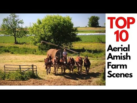 Top 10 Aerial Amish Farming Scenes Compilation - Horse drawn ag machinery  and farm equipment in 4K