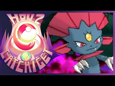 How to evolve Sneasel into Weavile in Pokemon Sun and Moon ...
