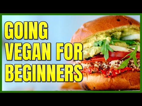My Top 5 Tips for Going Vegan