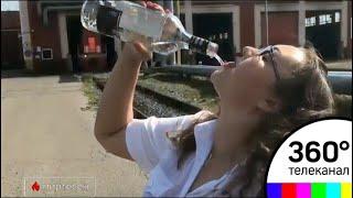 Сочинские проводницы показали, как это пить по-питерски