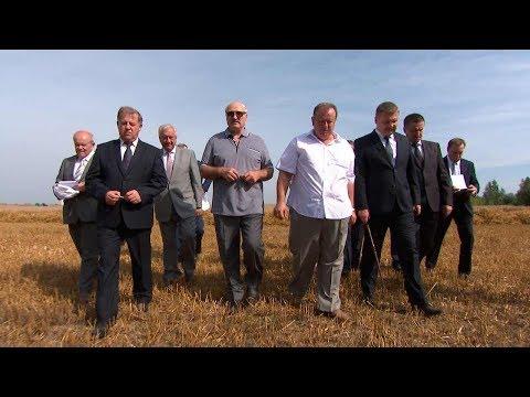 Лукашенко ознакомился с уборочной в Брестской области