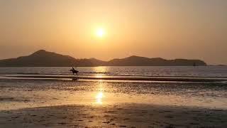 태안신두리해변외승동명상과사진_20211002