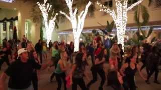 Zumba Flash Mob 2014 - A Little Party Never Killed Nobody (All We Got) - Fergie, Q-Tip, Goon Rock