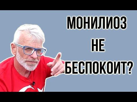 МОНИЛИОЗ признаки / КАК ЛЕЧИТЬ монилиоз / Игорь Билевич