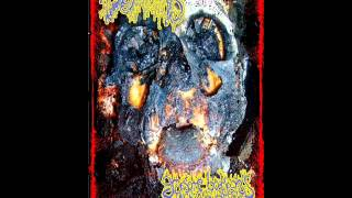 Gruesome Bodyparts Autopsy - Necrophilia On The Dissecting Table (Autophagia Cover)