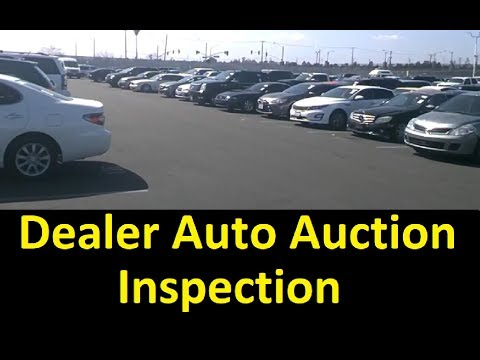 Wholesale Auto Auction Used Cars Cheap Bid Buy Youtube