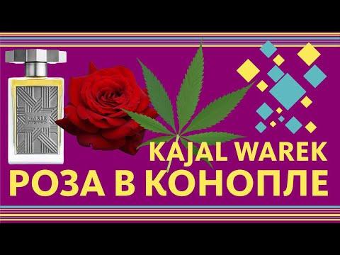Kajal Warek ОБЗОР парфюма - Конопляная Роза // Fragrance Review
