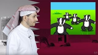 #QTip: 5 Animals you (probably) didn't know exist in Qatar