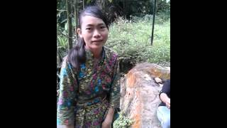 Download Video Gunung betung sex riski MP3 3GP MP4